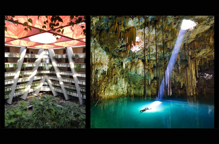 The lobby returns to nature, it is a cenote